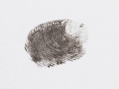 Olof Palmen murhatutkimus siirtyy Google Driveen