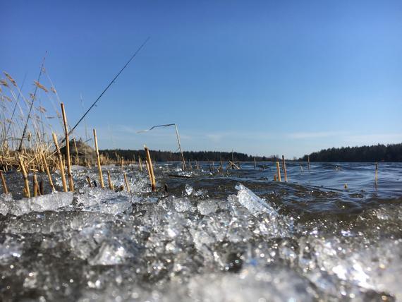 koukku suola järvitoimisto osapuoli kytkennät