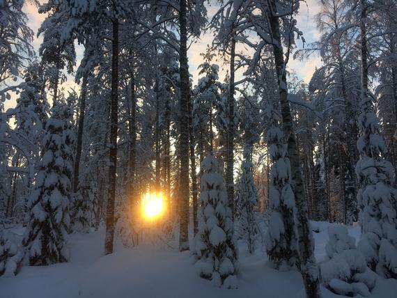 Suomen Ilmastopaneeli