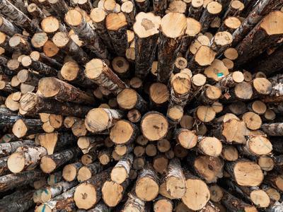 Nyt tuli kova palkkaratkaisu: Metsäteollisuus irtautuu työehtosopimuksista