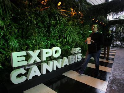 Kannabisosakkeet